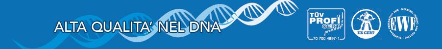Butti Alta Qualità nel DNA